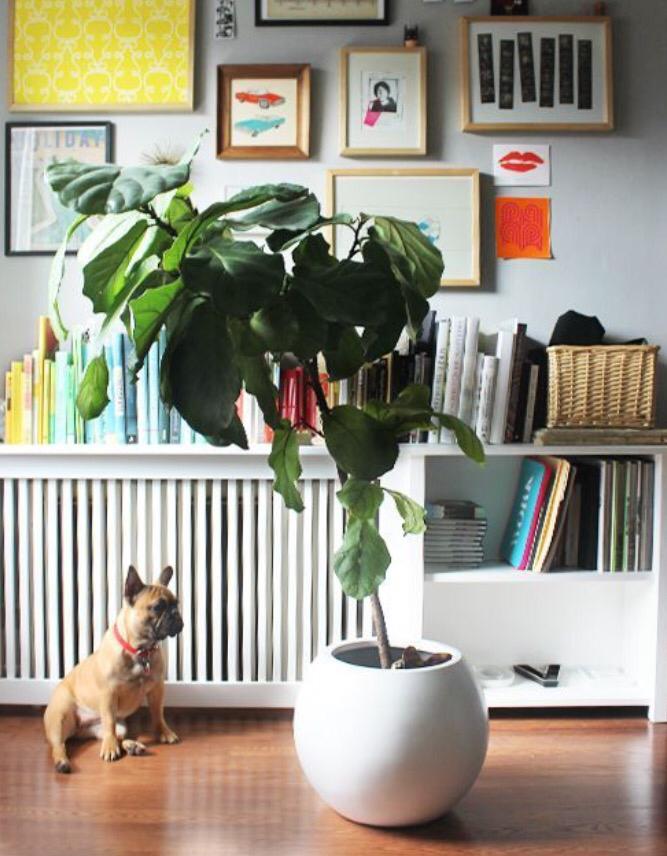 11 ideas para cubrir radiadores decoraci n - Ideas para cubrir radiadores ...